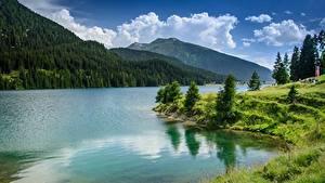 Картинки Швейцария Гора Озеро Облачно Дерево Lake Davos Природа