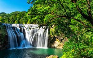Картинки Тайвань Водопады Скале Ветвь Shihfen Waterfall