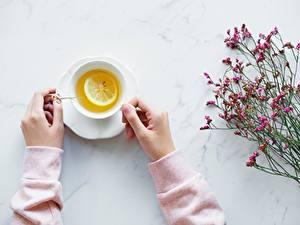 Фотография Чай Лимоны Рука Чашке Пища