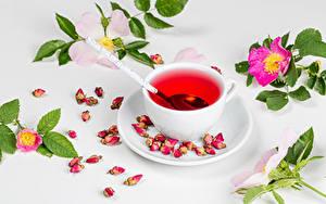 Обои для рабочего стола Чай Роза Чашка Ветвь Лепестки Продукты питания
