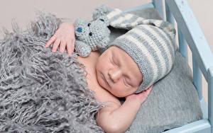 Картинка Мишки Младенец Шапки Спит