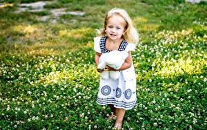 Фото Плюшевый мишка Девочки Платья Траве Дети