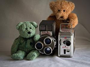 Фотографии Мишки Двое Фотоаппарат
