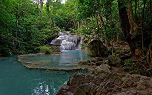 Фото Таиланд Лес Парк Водопады Камни Деревьев Ручеек Erawan National park