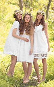 Фотография Трое 3 Шатенки Платья Улыбается Красивые молодые женщины