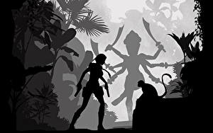 Фотографии Tomb Raider Лара Крофт Силуэт Adventures Игры Девушки