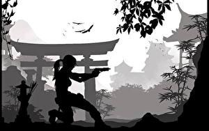 Фотография Tomb Raider Лара Крофт Силуэт компьютерная игра Девушки