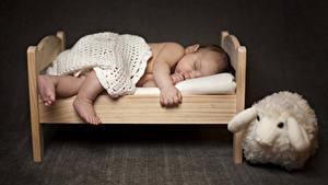 Фото Игрушка Младенца Кровать Спят