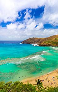 Картинки Тропики Берег США Океан Гавайские острова Пляж Облака Бухты