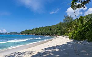 Фотография Тропики Побережье Волны Кусты Песок Seychelles Anse Takamaka
