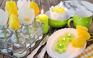 Фото Тюльпаны Свечи Тарелка Чашка Цветы