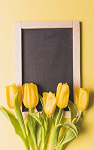 Фото Тюльпаны Цветной фон Шаблон поздравительной открытки Желтых Цветы