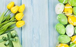Фото Тюльпаны Пасха Яйцами Шаблон поздравительной открытки Доски Цветы