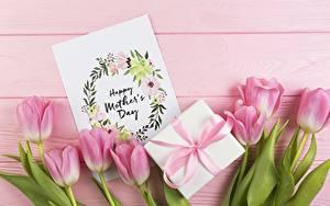 Фото Тюльпаны Праздники Розовых Подарок Цветы