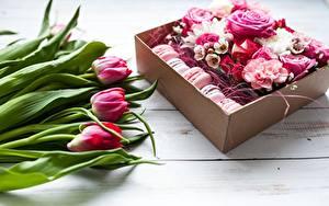 Фотография Тюльпаны Розы Макарон