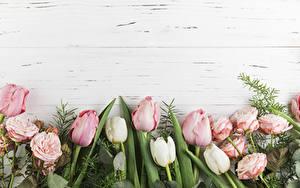 Фото Тюльпаны Роза Доски Розовый