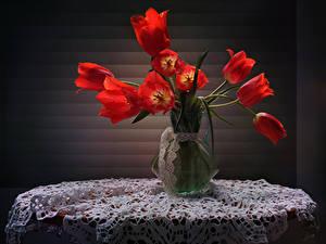 Фотографии Тюльпаны Столы Ваза Красные Цветы