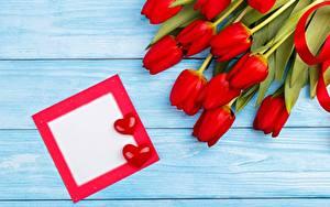 Фото Тюльпан День святого Валентина Красный Шаблон поздравительной открытки Сердце Цветы