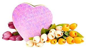 Фото Тюльпаны День святого Валентина Белый фон Сердце Разноцветные Цветы
