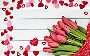 Фото Тюльпан День всех влюблённых Доски Сердце Шаблон поздравительной открытки Розовая Цветы
