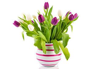 Фотографии Тюльпаны Ваза Цветы
