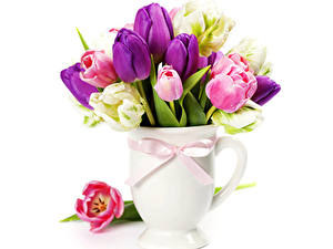 Картинка Тюльпан Вазы цветок
