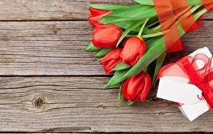 Картинки Тюльпаны Доски Шаблон поздравительной открытки цветок