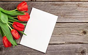 Картинка Тюльпаны Доски Шаблон поздравительной открытки Лист бумаги Красный Цветы