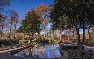 Фотографии Штаты Осенние Парки Пруд Водопады Деревья Gibbs Gardens Природа