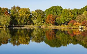 Фотографии США Осень Речка Мосты Дерево Ozarks Missouri
