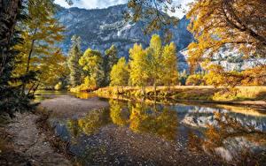 Фото США Осень Реки Гора Йосемити Дерево Merced River Природа