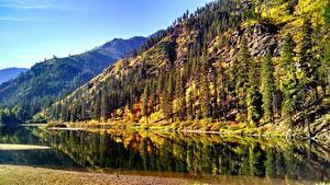 Обои Штаты Осенние Пейзаж Гора Леса Озеро Washington state Природа