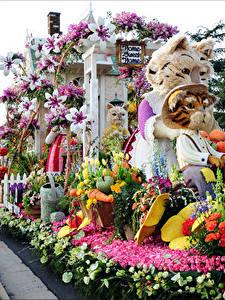 Фото Штаты Кошки Тюльпан Роза Орхидеи Калифорния Дизайн Rose Parade Pasadena Природа