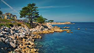 Картинки Америка Побережье Здания Камень Океан Калифорнии Залив Дерево Monterey Bay