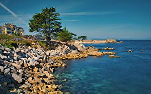 Картинки Штаты Берег Здания Камень Океан Калифорнии Залива Дерево Monterey Bay Природа