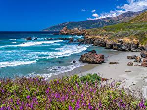 Фото Америка Побережье Океан Гора Камни Калифорния Big Sur