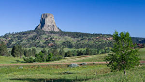 Картинка Штаты Холмы Трава Утес Деревья Devils tower, Wyoming Природа