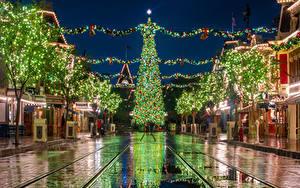 Фотографии США Диснейленд Рождество Парки Дома Калифорния Анахайм Новогодняя ёлка Ночные Улица Электрическая гирлянда Города