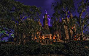 Картинка Штаты Диснейленд Парки Здания Калифорния Анахайм Дизайн Кусты Деревья Ночные Города