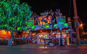 Картинки Штаты Диснейленд Парки Здания Калифорния Анахайм Ночные Уличные фонари Электрическая гирлянда Деревья Города