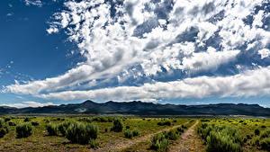 Фотографии Штаты Поля Небо Облачно Panguitch