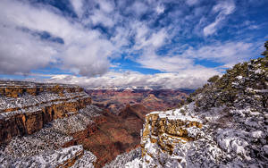 Картинка США Гранд-Каньон парк Горы Небо Скала Дерево Снеге Облако Arizona