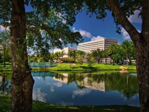 Картинка Штаты Здания Мост Водный канал Дерево Miam Florida International University город