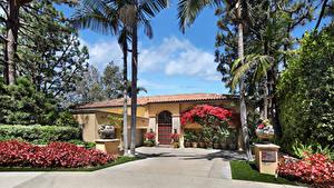 Картинка Америка Дома Особняк Дизайна Кустов Пальм Newport Beach Города