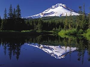 Обои Штаты Озеро Гора Леса Снегу Mount Hood, Oregon Природа