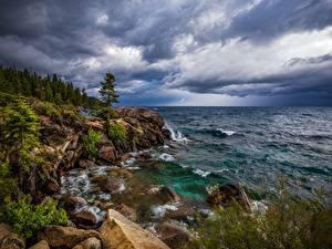 Картинка США Озеро Камень Скала Дерево Lake Tahoe