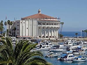 Картинка США Катера Пальм Калифорния island Santa Catalina, Avalon город