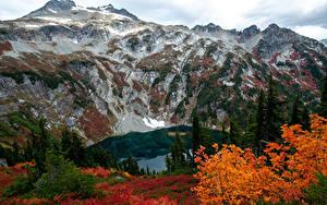 Картинка Штаты Горы Озеро Осенние Doubtful Lake Природа