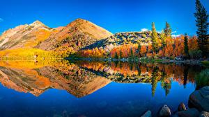 Фотографии США Горы Реки Осень Пейзаж Калифорнии Отражении Природа