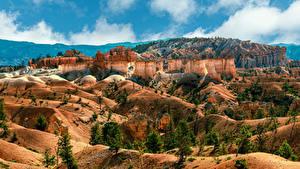 Картинки Штаты Парки Утес Каньона Bryce Canyon National Park, Utah Природа